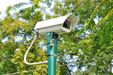 Security Camera or CCTV in green park