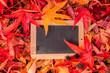 Tafel im Herbstlaub