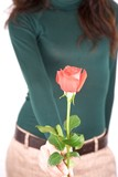 green sweater woman offering red rose
