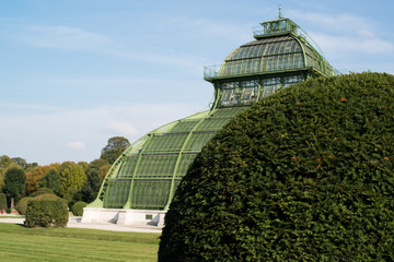 Beautiful Old Greenhouse