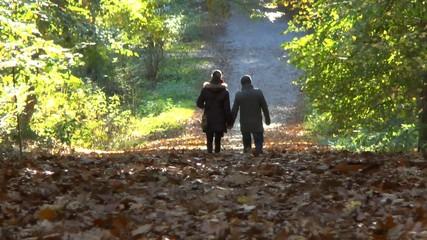 Herbstspaziergang eines Pärchens