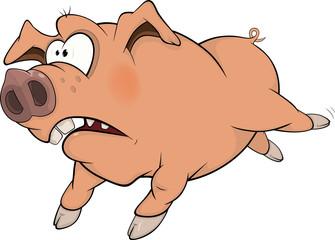 Pig. Cartoon