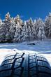gomma da neve