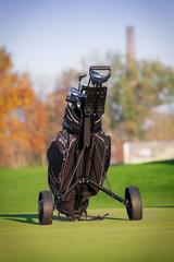 Golf clubs in golfbag