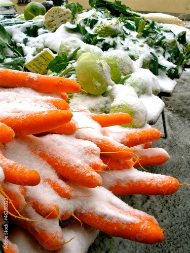 Snow Carrots