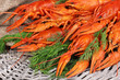 Tasty boiled crayfishes with fennel