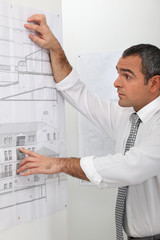 Architect looking at plans on a wall