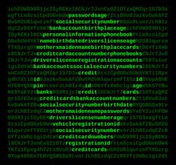 Computer Cyber Crime Hacker