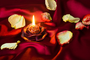 Burning candle on a crumpled tissue with rose petals