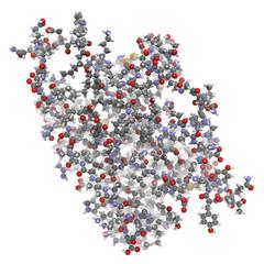 Interleukin 6 (IL-6) molecule, chemical structure