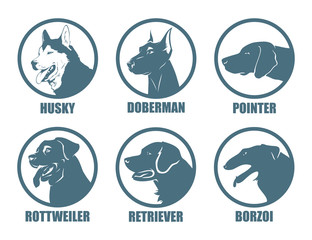 Dog breeds labels - vector illustration