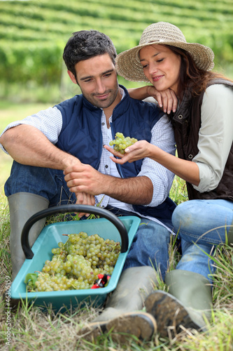 Couple in field eating grapes
