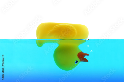 Tuinposter Duiken Drowning duck in blue water