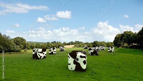 Cubic cows