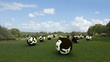 Spherical cows