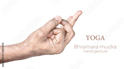 Bhramara mudra