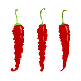 Sketch of red chili peppers for your design