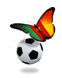 Concept - butterfly with Cameroon flag flying near the ball, lik