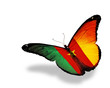 Cameroon flag butterfly flying, isolated on white background
