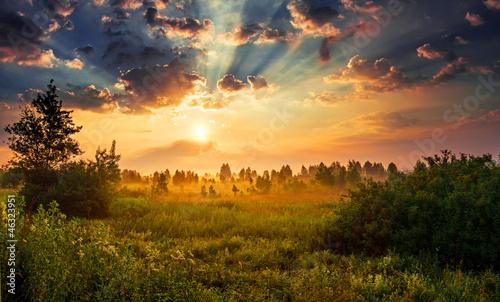 Fototapeten,wolken,morgengetränk,feld,wald