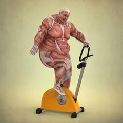 Anatomía de un Hombre haciendo Ejercicio