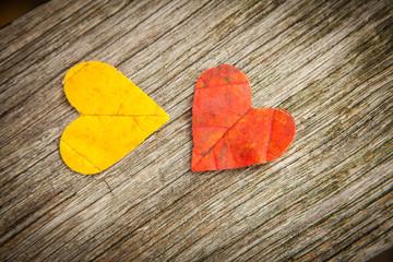 Autumn leaf love hearts