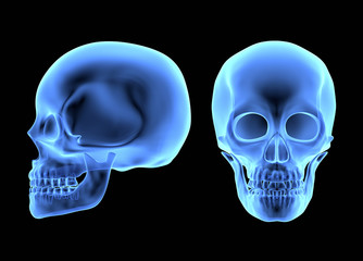 Human Skulls isolated on black. X-ray effect
