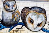 Graffiti - 46336558