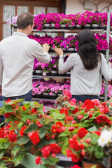 Couple looking at shelf of purple flowers