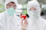 Two students standing at the laboratory holding a tomato