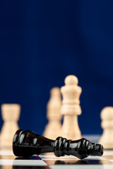 Black chess piece lying