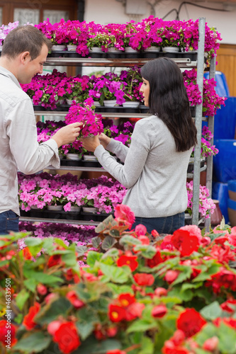 Couple picking flower from shelf
