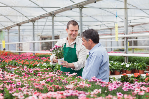 Man and employee looking at flowers in greenhouse