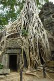 Ruins of ancient temple. Angkor wat, Cambodia
