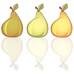 3 fresh pears in different colors