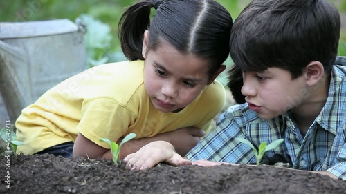 Young boy and girl planting and touching seedling in garden