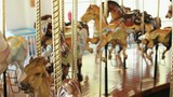 Carousel horses moving up and down