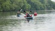 Senior couples kayaking on river
