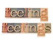 feelings in wood type in wood type