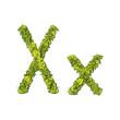 Eco Font Letter X