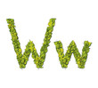 Eco Font Letter W