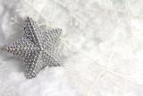 Fototapety Wertvoller Silberstern im Winterkleid
