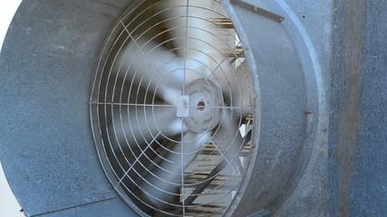 Turbo Fan of Evap close farm system for Temperature control