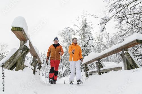 Walker im Schnee