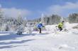 Langlaufen in winterlicher Landschaft