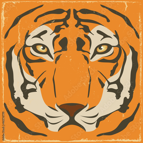 Vintage Tiger Stripes On Grunge Background