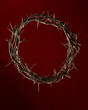 Crown of Thorns Over Red Clothe