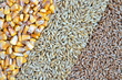 colorful cereal seeds as background