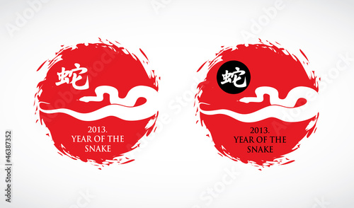 2013. Year of the snake symbol