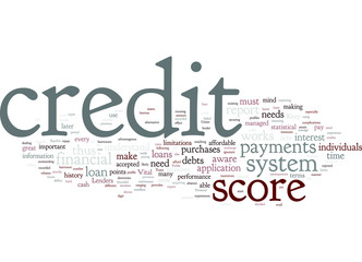 can_credit_report_score_system_works